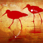 jul-13-walk_in_the_sun-preview