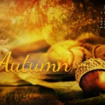 nov-13-acorns-of-autumn-preview